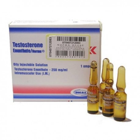testosterone enanthate 250 results